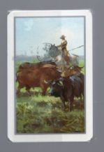 Collectible playing cards Bull-fighting 1950-60's by Fournier.